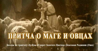 Притча о маге и овцах