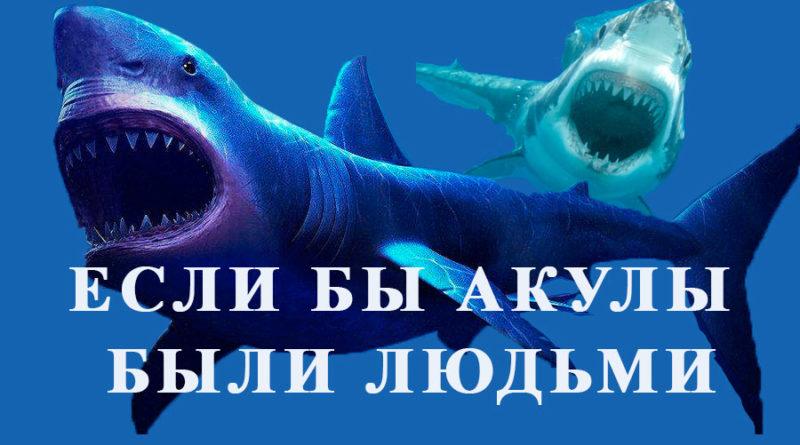 Если бы акулы были людьми